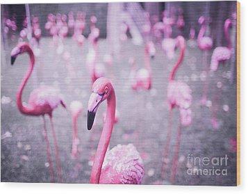 Wood Print featuring the photograph Flamingo by Setsiri Silapasuwanchai