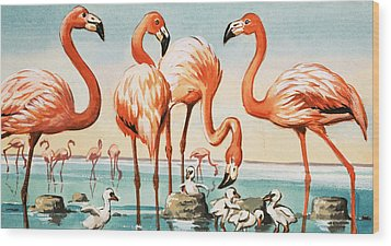 Flamingoes Wood Print