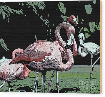 Wood Print featuring the photograph Flamingos I by Jim and Emily Bush