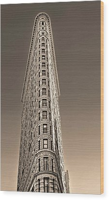 Flat Iron Building New York City Wood Print