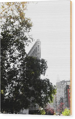 Wood Print featuring the photograph Flatiron Autumn  by Nicklas Gustafsson