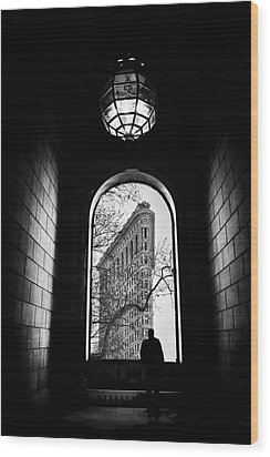 Wood Print featuring the photograph Flatiron Perspective by Jessica Jenney