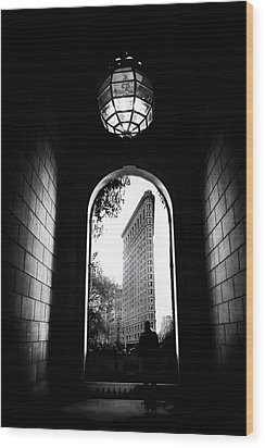 Wood Print featuring the photograph Flatiron Point Of View by Jessica Jenney