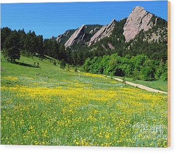Flatirons And Yellow Meadow Wood Print
