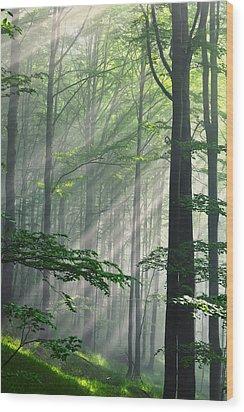 Fleeting Beams Wood Print by Evgeni Dinev