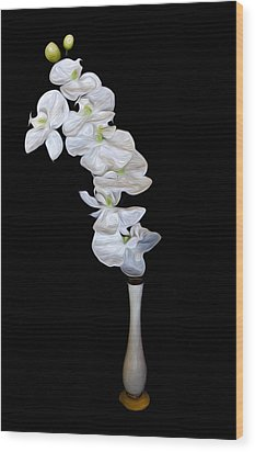 Fleur Blanche Wood Print by Cecil Fuselier