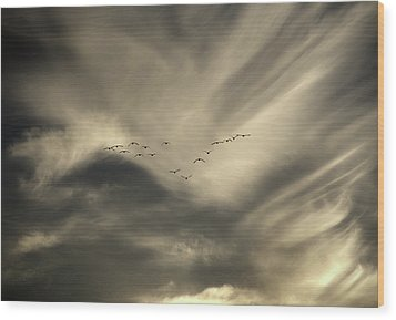 Wood Print featuring the photograph Flight 016 Westbound by Robert Geary