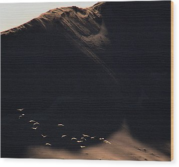 Wood Print featuring the photograph Flight At Dawn by Al Swasey