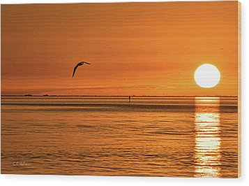 Flight At Sunset Wood Print by Christopher Holmes
