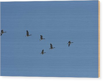 Flight Wood Print by Gregory Jeffries