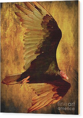 Flight Of A Vulture . Texture . 40d8879 Wood Print by Wingsdomain Art and Photography