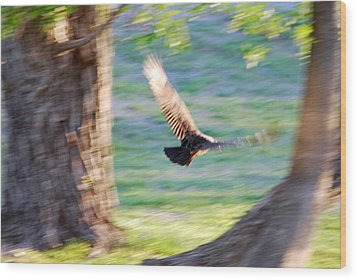 Wood Print featuring the photograph Flight Of The Heart by Teresa Blanton