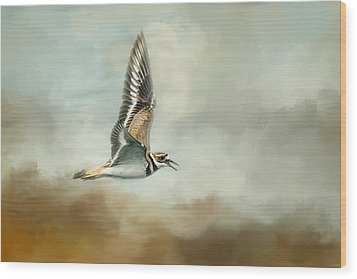 Flight Of The Killdeer Wood Print by Jai Johnson