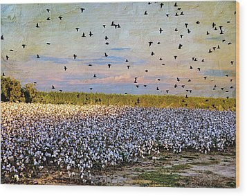 Wood Print featuring the photograph Flight Over The Cotton by Jan Amiss Photography