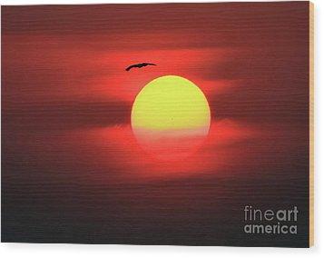Flight To The Sun Wood Print