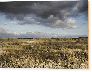 Wood Print featuring the photograph Flinders Ranges Fields V3 by Douglas Barnard
