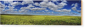 Flint Hills Panorama 1 Wood Print
