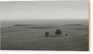 Wood Print featuring the photograph Flint Hills Vistas by Thomas Bomstad