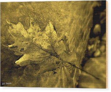 Floating Foliage Wood Print by Ed Smith