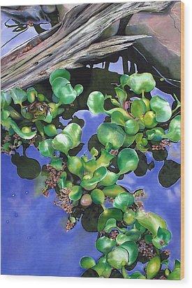 Floating Lilacs Wood Print by Denny Bond