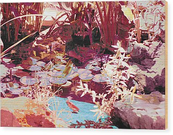 Floating Lilies Pads Above The Koi. Wood Print by Judy Loper