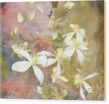 Floating Petals Wood Print by Colleen Taylor