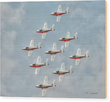 Flock Of Snowbirds Wood Print by CR  Courson
