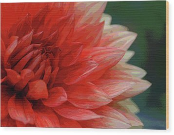 Wood Print featuring the photograph Floral Delight by Mike Martin