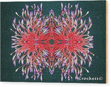 Floral Display Wood Print by Gary Crockett