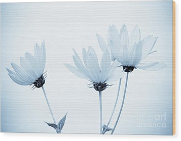 Floral Elegance Wood Print by Anita Oakley