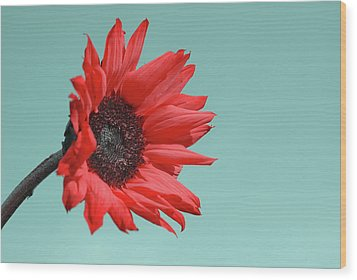 Floral Energy Wood Print by Aimelle