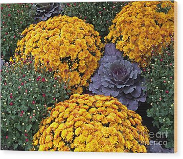 Floral Masterpiece Wood Print by Ann Horn