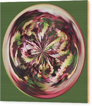 Floral Orb Wood Print by Bill Barber