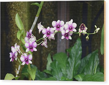 Wood Print featuring the photograph Floral Sway by Deborah  Crew-Johnson