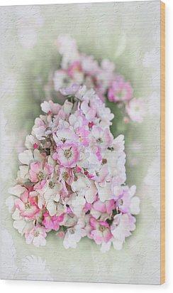 Florence Wood Print by Elaine Teague