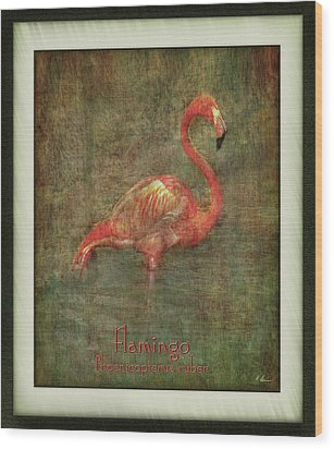 Wood Print featuring the photograph Florida Art by Hanny Heim