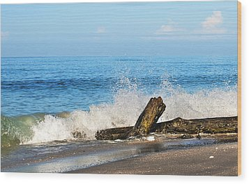 Wood Print featuring the photograph Florida Beach by Gouzel -