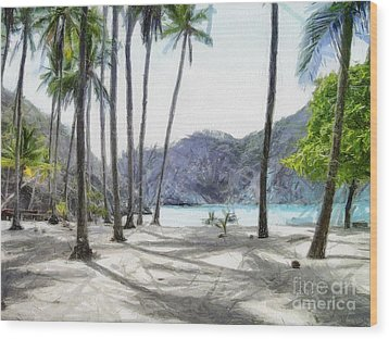 Florida Beach Wood Print by Murphy Elliott