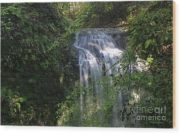Wood Print featuring the photograph Florida Falls by Dodie Ulery
