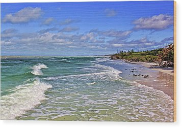 Florida Gulf Coast Beaches Wood Print by HH Photography of Florida