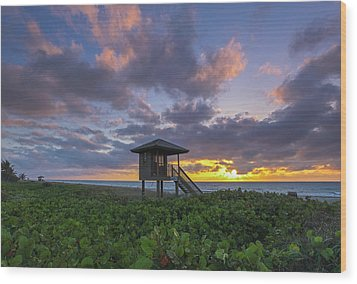 Wood Print featuring the photograph Florida by Juergen Roth