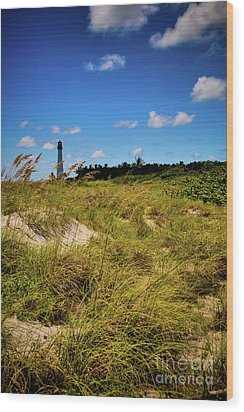 Wood Print featuring the photograph Florida Lighthouse  by Kelly Wade
