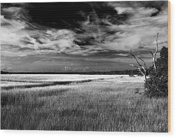 Florida Marsh Wood Print by Marcus Adkins