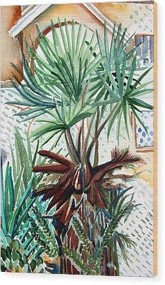 Florida Palm Wood Print by Mindy Newman