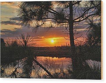 Florida Pine Sunset Wood Print
