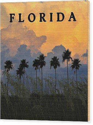 Florida Poster Wood Print by David Lee Thompson