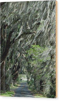 Florida Road Wood Print