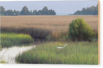 Wood Print featuring the photograph Florida Saltmarsh by Peg Urban
