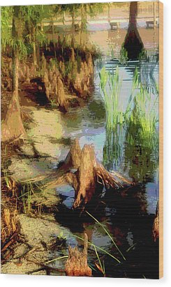 Florida Swamplands Wood Print by Rianna Stackhouse