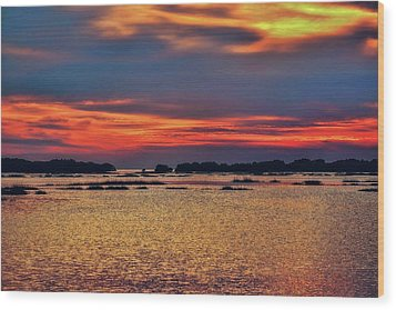 Wood Print featuring the photograph Florida West Coast  by Louis Ferreira